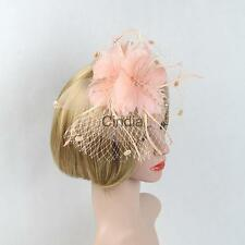 Mesh Hair Band Feather Flower Fascinator Ladies Day Burlesque Party Fancy Dress