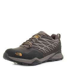 Mens The North Face Hedgehog Hike GTX Morel Brown Yellow Hiking Boots Shu Size