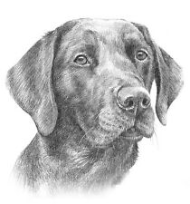 COMMISSION A PET PORTRAIT. Custom pencil drawing from photo. dog / cat