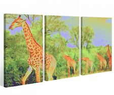 Canvas 3 PC Pictures Giraffe Africa Animal Savannah Wall 9a519