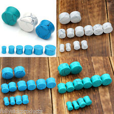 6 Pairs Turquoise Stone Gauge Flared Ear Plugs Tunnel Expander Stretcher Kit Set