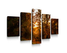 5 PANEL SPLIT CANVAS PRINT WALL ART OF AUTUMN FOREST FRAMED AND READY TO HANG