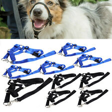 Dog Pet Head Collar Halter Leash Leader No Pull Training Straps S M L XL 2XL New