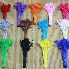 New 100 pcs natural craft trimmings decor lady Feathers various occasion