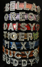 Close-Out !! Personalized Metallic-look Pet Dog Cat Collars All Sizes/Colors