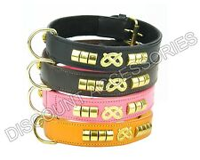 STAFF STAFFIE STAFFY LEATHER DOG COLLAR BULL TERRIER BLACK BROWN PINK STRONG