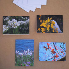 Spring Flowers and Leaves Greetings Card - Blank inside - choose your design