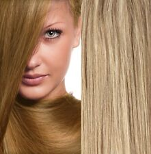 GoGoDiva Clip In Remy Human Hair Extensions #16 Light Golden Blonde 15 18 20 +