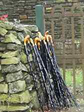 Irish Blackthorn Walking Stick - Hand Carved Genuine Wood from Ireland