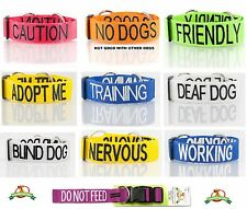 Strong Nylon S-M L-XL Dog Collar Or 2+4+6 Foot Leash/Lead By FriendlyDogCollars