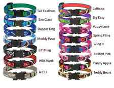 """Lupine Small Dog or Cat Patterned Collar - 1/2"""" Wide Assorted Sizes"""
