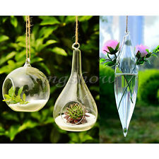 Hanging Glass Plant Flowers Vase Hydroponic Container Home Party Wedding Decors