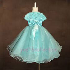 SALE! Turquoise Rose Beads Flower Girls Wedding Party Formal Dress Size 2T - 8y
