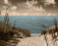 Coastal Brown Blue Wall Art / Beach/ Bedroom Decor Matted Picture (Options)