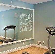 FEEL LIKE QUITTING? Etch Effect Decal for Mirrors or Glass Home Gym Motivation