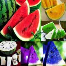 10pcs Rare Watermelon Seeds Delicious Colorful Fruit Vegetables Seed Wholesale C