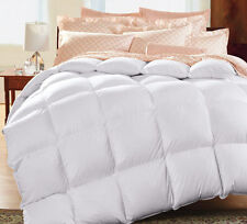 All Season 1200 Thread Count Solid Bamboo 100% Natural Down Comforter 750FP