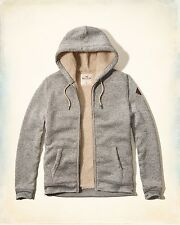 Mens Hollister Textured Sherpa Lined Hoodie Gray Brand New NWT M L XL Solid