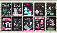 Baby Milestone Cards - Chalkboard effect - Boys Girls or Unisex Photo Prop Signs