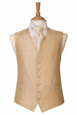 MENS AND PAGE BOYS SILK GOLD SILK WEDDING DRESS SUIT WAISTCOAT ALL SIZES