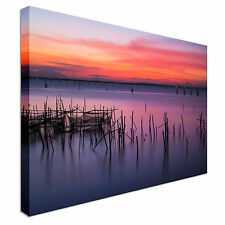 Sunset over reeds Canvas wall Art prints high quality great value