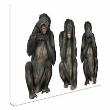 Three Wise Monkeys 40x20inches Wall Picture Canvas Art Cheap Print
