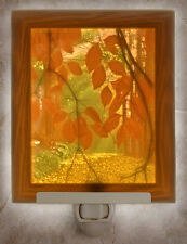 Colored Secret Path Lithophane Night Light Porcelain Nightlight
