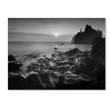Moises Levy 'Sunset At Ruby Beach' Canvas Art. Shipping is Free