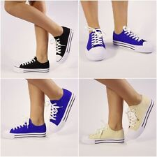 Ladies Women Converse Classicr Low Trainer Sneaker  Chuck Taylor   All Size