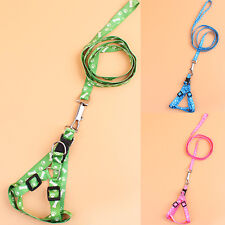 Cat Doggie Paw Bone Leash Chest Strap With Lead Leash Small Dog Pet Harness