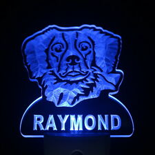 ws1058-tm Brittany Spaniel Personalized Name Day/ Night Sensor LED Night Light