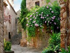 XL Photo Wallpaper Mural Spanish Alleyway Nature | Des-14