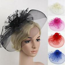 Floral Polka Dot Feather Mesh Fascinator Hat on Clips Party Race Hair Accessory