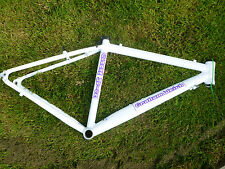 Graham Weigh youth cyclocross or road frame, small, 45cm, 700c
