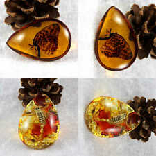 Beautiful Resin Amber Butterfly Scorpion Insect Stone Pendant Necklace NEW