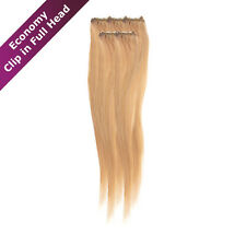 Economy Full Head | Clip in Hair Extensions | American Pride | 18 Inch | Light G