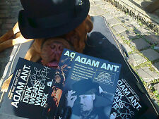 ADAM ANT SIGNED FLYER DIRK WEARS WHITE SOX HAMMERSMITH APOLLO 19 April 2014+Tour