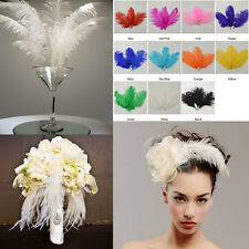 10PCS Perfect Natural Ostrich Feathers 6-8 inch/15-20cm Wedding Party Decor US