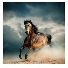 20/30/40/50/60cm Canvas Wall Hanging Art Painting Picture Decor Running Horse
