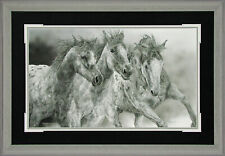 Framed The Protesters Judy Larson AP 150 16x28 Paper Signed NEW Horses Mustangs