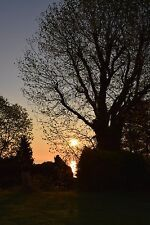 5 star Seaview Last Minute Holiday cottage acre garden&tennis ct