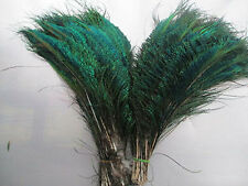 Wholesale new 20- 500 Pcs Natural Peacock Sword Feathers 12-14inches/30-35cm