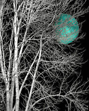 Black White Turquoise Moon Modern Bedroom Wall Art Home Decor Matted Picture