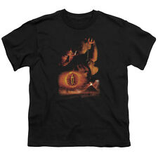 Lord of the Rings DESTROY THE RING Licensed  Youth T-Shirt S-XL