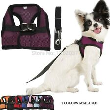 Fashionable mesh cloth purple Pet harness Dog cats vest harness Dog clothes