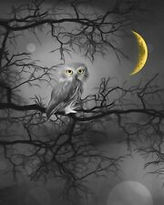 Black White Yellowl Owl Tree Moon Home Decor Wall Art Matted Picture