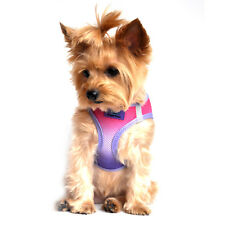 NEW American River Choke-Free Dog Harness - Raspberry Sundae Ombre 3-90 lbs