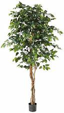 Nearly Natural 5209 6Ft. Ficus Silk Tree