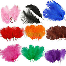 New 10pcs 10 -12 inch Ostrich Feathers optional-colors wedding decorations