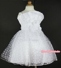 White Heart Gown Wedding Party Skirt Bridal Flower Pageant Dress 2-8Y PD0029